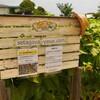 再び、「こうちゃんちの野菜 in 世田谷」に行ってみた