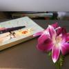 【近ツリ旅行記】タイ航空で、初訪バンコクへ 【タイ航空エコノミークラス搭乗記】