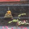 チェンマイのお寺でタイマッサージ& 微妙なこと。