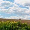 今日の疑問:「農トレ」するとどうなるの?
