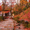 京都・嵐山 - 晩秋の常寂光寺