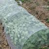 冬野菜の片付けと春野菜の植え付けを・・・