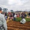 子ども収穫体験@セナリオハウスパーク柏たなか(柏たなか駅前公園)
