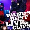 WANDS BEST LIVE&CLIPS