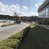 11月の千波湖公園
