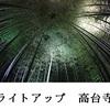 「竹林」にての心の煌き、神秘をも心のなかへ誘うならば