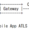 Application-Layer TLS の標準化動向