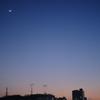Photo No.248
