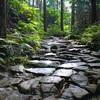 国産の激安ミネラルウォーターなら、尾鷲の「熊野古道水」が最強!