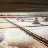 塩を巡る旅  【台湾編】台南
