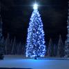 【無料/フリーBGM素材】孤独、淋しい、チェレスタ『Lonely Time』クリスマス音楽