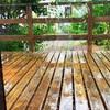 ―雨とたくぼくさん―