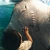 1歳2ヶ月 歩き始めに新江ノ島水族館