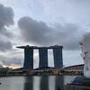 【シンガポール旅行】4日目 シンガポール動物園、リバーサファリ、ナイトサファリ