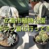 広島市植物公園のサボテン展に行ってきました。戦利品のまん丸ホリダもゲット!