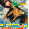 学研の鳥図鑑に写真掲載