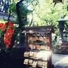 聖なる場所を巡る 愛宕神社の千日詣り百六十八回目 2016.8.19金曜日