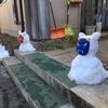 【日帰り登山】2019年登り始め!武蔵御岳神社でご祈祷を受け、雪の御嶽山ロックガーデンを歩きつるつる温泉に入ってきました!