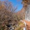 2018-紅葉狩りライド:渓流の落葉ロードを遡り柳沢峠へ