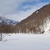 スノーシューツアー 〜みなかみ 冬の森の秘密〜