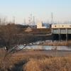 川島町白鳥飛来地 - 越辺川