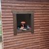 自転車小屋DIY 其の十八 窓とドア