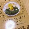 テラリウムコレクション「pokémon」