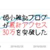【運営報告】ワイのクソ雑魚弱小雑記ブログが累計アクセス30万を突破した件【PV減少】