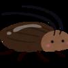 殺虫剤で殺されるゴキブリの気持ちを考えてみよう