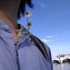 木漏れ日と花