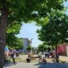 子育て世代にオススメの公園 総社市 ときわ公園【岡山おでかけスポット】【緊急事態宣言中でも遊べる公園】