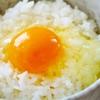 『卵は一日何個まで食べていいの?』そんなの気にしてられるかっ!