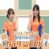 大坪奈津子 CM 2019年11月05日(火)