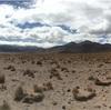アタカマ砂漠 って砂漠?! チリ