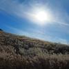 秋の仙石原へ、大涌谷へ。