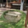 夏越の祓 茅の輪づくり(三光神社さんにて)