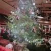 【おいしーい!】ブルックリンパーラーでオシャレに楽しくメリークリスマス女子会☆