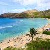 ハワイ旅行計画!~Wi-Fi編~