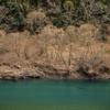 関西ロングツーリング。十津川村、熊野、龍神、日高川、椿山レイクブリッジ、修理川で往復300㎞越え。