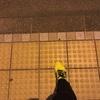 旅RUN In 松山!& 走るエースのブログ(笑)