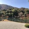 嵐山の雄大な借景が広がる「天龍寺」の紅葉が映える絶景庭園