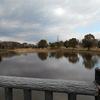 元河内湖の深野池がある深北緑地!残念石や冬の野鳥観察、恐竜広場とロケット広場に寝屋川排水門など無料で見どころ満載だよ!【大東市・寝屋川市】