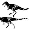 *いしのなかにいる*【ドリプトサウルス原記載150周年記念記事】