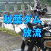ロイヤルエンフィールドで『秋葉ダム(静岡県浜松市)』へ、吊り橋から放流動画を撮影しました