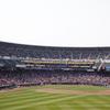 野球だけを見るのはもう古い?楽しめる球場が主流に!