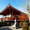 33年に一度のご開帳、日本一大きい座り仏像の櫟野寺を訪ねて