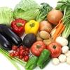 野菜の鮮度を長く保つ為の保存方法の紹介