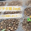 ナス発芽!~播種から発芽までの条件と日数は??~ベジヲタ畑Day6