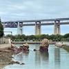 一日一撮 vol.373 瀬戸大橋記念公園から対岸の砂浜へ