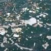 海のゴミはどこから来るのか!?その犯人とは・・・